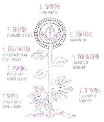 8-piliers-du-yoga